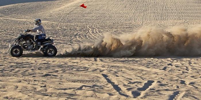 Washington Sand Dunes