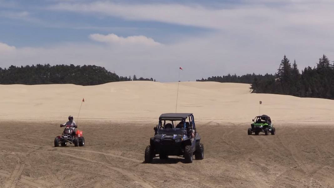 Sand Lake Sand Dunes