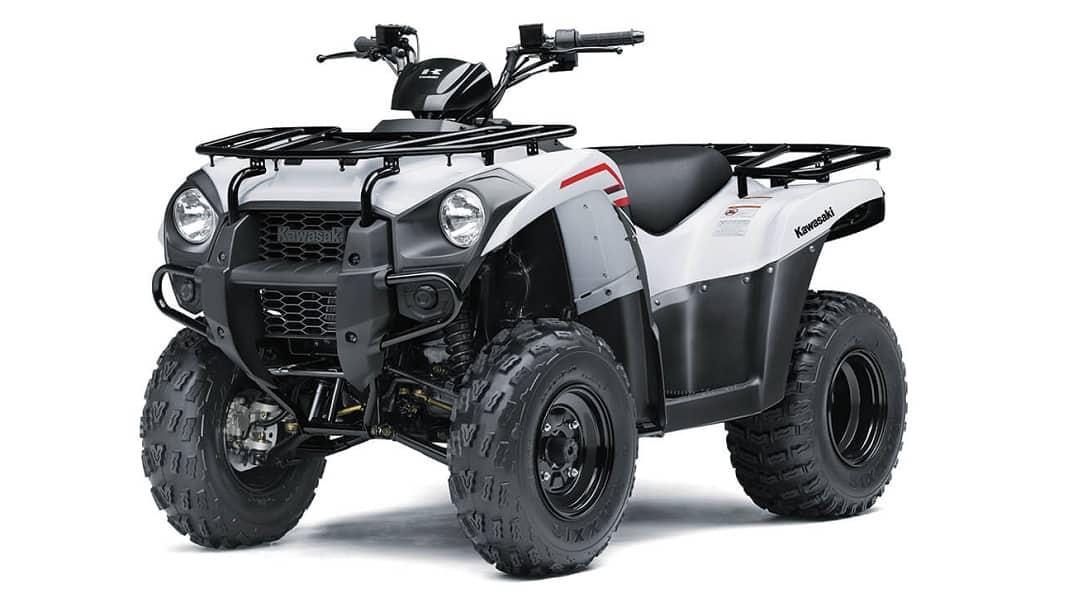 2021 Brute Force 300cc 1068