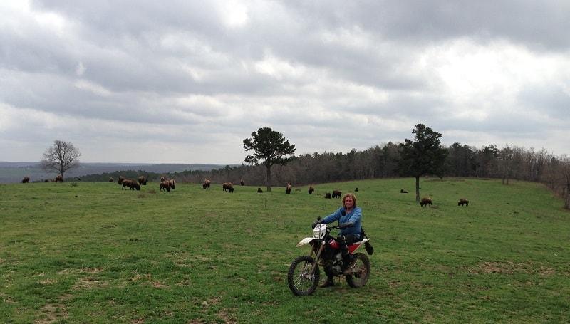 ATV Parks In Arkansas - Wilderness Rider Buffalo Ranch & Adventure Park